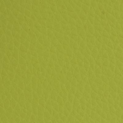Πράσινη Δερματίνη
